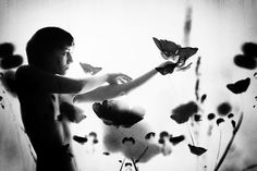 Summer is a mind state. by Stefania Cruceru Alchemy, Ethereal, Ph, Mindfulness, Butterfly, Memories, Pure Products, Black And White, Concert