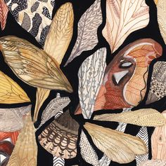 MICHELLE MORIN, Wings (a close up of a larger work) -- beautiful, earth-colored patterning.