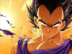 Google Image Result for http://images5.fanpop.com/image/photos/25500000/Vegeta-dragon-ball-z-25544772-1024-768.jpg