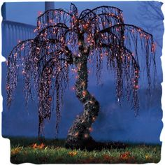 Spooky Halloween Willow Tree.  I wonder if I could figure this out.