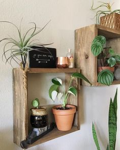 Learn how to make these Easy Box Shelves - Perfect for small houseplants - Clever Bloom #diy #easy #shelves #boxshelves #displayideas #woodshelves