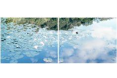 鈴木理策写真展 意識の流れ | EXHIBITION | IMA ONLINE