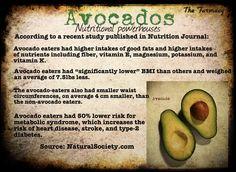 Avocados: Nutritional Powerhouses | REALfarmacy.com | Healthy News and Information