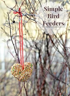 Simple DIY Bird Feeder that is fun to make and a blast to watch the birdies enjoy | http://www.blessthismessplease.com