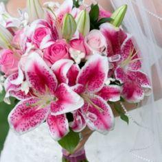 Stargazer Lilies :)