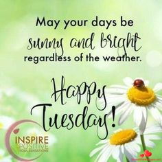 20 Best In this article I am going to share with you the best happy Tuesday morning to the people that you want and to be able to dedicate all your wishes to make it a wonderful day. Tuesday Quotes Good Morning, Happy Tuesday Quotes, Tuesday Humor, Morning Greetings Quotes, Good Morning Good Night, Good Night Quotes, Morning Messages, Morning Pics, Monday Quotes