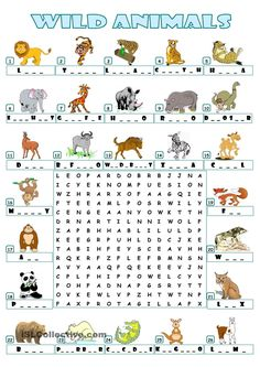 WILD ANIMALS - WORDSEARCH