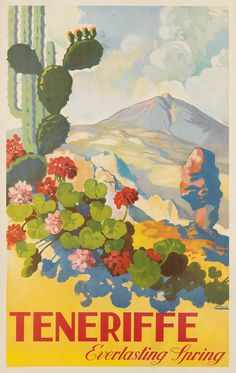 Mexico Fashion Lady Flowers Birds Fountain Travel Vintage Poster Repo FREE S//H
