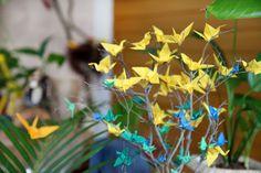 Tsurus Plants, Safari Party, Nature, Plant, Planets