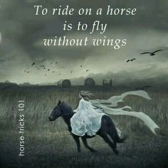 Horse quote, ...fly without wings.