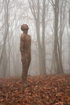 taste the rain, bark sculpture by anna gillespie. équilibre matière,milieu; déséquilibre plat/volume