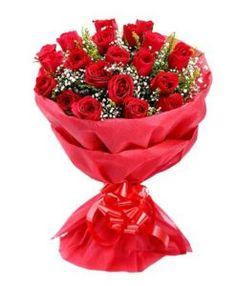 20 Red Rose