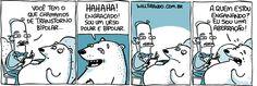 Aquela do Urso Bipolar