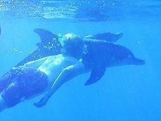 Mark & dolphins by Celebrating Everyday Ecstacy, via Flickr