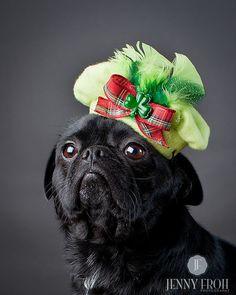 Dog Beret Hat Shamrock Saint Patricks Day by KOCouture on Etsy.  #irish #pug #beret https://www.etsy.com/listing/90975839/dog-beret-hat-shamrock-saint-patricks?ref=af_circ_favitem❤️