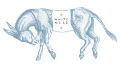 Gabriele Wilson Design: White Mule Identity  I'm a big fan of the work that comes out of Gabriele Wilson Design, especially because she's developed brands for quite a few recognizable NYC establishments that I've been lucky enough to check out in person. When browsing her portfolio recently, the identity and collateral for White Mule—a framing shop with a focus on craftsmanship, design and personalized service—happened to catch my eye.