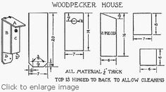 How to build a woodpecker house, a wooden bird house designed for woodpecker or flicker families. Wooden Bird Houses, Bird Houses Diy, Bird House Plans, Bird House Kits, Birdhouse Craft, Birdhouses, Downy Woodpecker, Bird Types, How To Attract Birds