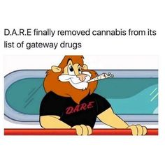 Adult Memes
