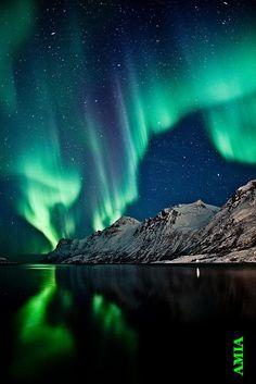 (1) AMIA TUDOR ❤❤ Aurora Borealis
