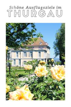 Die schönsten Ausflugsziele im Kanton Thurgau mit Bodensee Kanton, Around The Worlds, Road Trip Destinations, Travel Advice, Nature, Traveling, Nice Asses