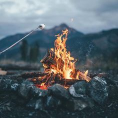 Weekends are for campfires & s'mores! Beauty  from @fursty #yum #camping #smores #friends #cozy #upperleftusa #getoutside #love #wanderlust #explorehoodcanal #campfire #campvibes
