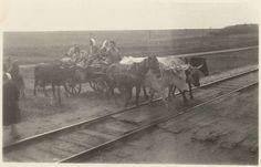 Anonymous | Boeren op een kar met koeien en paarden steken treinrails over, Anonymous, 1940 - 1945 | Een groepje boeren op een kar met koeien en paarden ervoor steekt een treinrails over. Foto behorend bij album 'Kriegserinnerungen'.