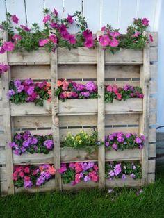 Bonito #jardim #vertical feito com #paletes. Saiba como fazer mais coisas em http://www.comofazer.org
