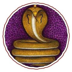 Naga, the cobra, is a symbol of kundalini power, cosmic energy coiled and slumbering within man. It inspires seekers to overcome misdeeds and suffering by lifting the serpent power up the spine into God Realization. Kundalini Tattoo, Kundalini Meditation, Hindu Symbols, Sacred Symbols, Wise As Serpents, Holy Lance, Hinduism History, Cobra Tattoo, Ornament Drawing