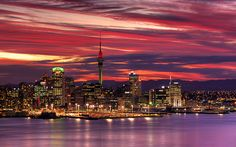 auckland at night ♥