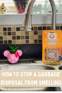 Yuck, sometimes the garbage disposal can reek! But here's how to get it to stop stinking. #ad Apricot Tart, Spring Cleaning, Cleaning Hacks, Lifestyle Blog, Helpful Hints, Organizing, Life Hacks, Diy Projects, Awesome