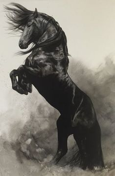 Fine Art Giclée Print 'WindStorm' is part of Fine Art Giclee Print Windstorm Art Horses Horse - roughly inches (with an additional s Most Beautiful Horses, All The Pretty Horses, Animals Beautiful, Beautiful Creatures, Horse Rearing, Friesian Horse, Thoroughbred, Black Horses, Wild Horses