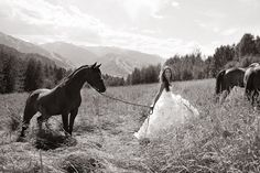 Cheval Horse Equestrian Wedding www.pegasebuzz.com/leblog