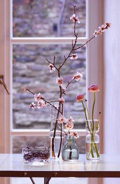 Fröhlich in den Frühling: Der März auf SoLebIch | SoLebIch.de #interior #magnolien #vase #spring #flower #decoration