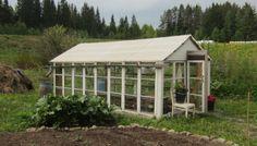 Kasvihuone tehty vanhoista ikkunoista <3 Tämä löytyy meitin takapihalta ja kyllä tulee makoisia luomukasviksia! Näistä ikkunoista voisi kyllä tehdä jos jonkunlaista muutakin projektia.