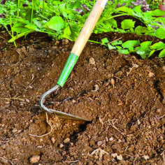 Feeding Healthy Soil  How to meet your soil's nutritional needs so it meets yours.