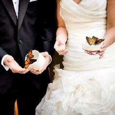 Schmetterlinge fliegen lassen... Romantic Chicago Wedding