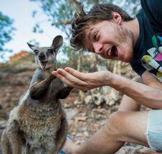 selfies engracadas com animais (9)