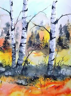 BIRCH tree art watercolor original landscape by pinetreeart