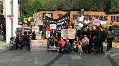 Hayvan Aktivistleri Beşiktaş Belediyesi Önünde Eylem Yaptı