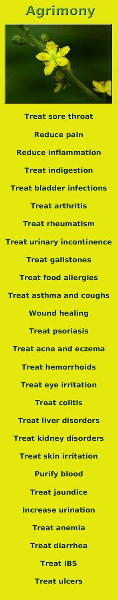 .AGRIMONY and its list of related conditions