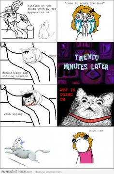 Cat owners will know - funny pictures Derp Comics, Rage Comics, Funny Comics, Crazy Funny Memes, Funny Relatable Memes, Funny Jokes, Hilarious, Funny Images, Best Funny Pictures