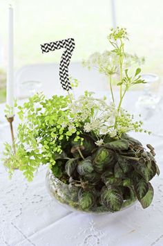 unique green wedding centerpiece.  Planted begonia, planted maiden hair fern, cut Queen Anne's lace stems inserted as accent.  Bold number as focal.