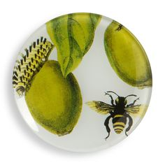 Love this Bee Decorative Glass Plate for $4.99 on C. Wonder