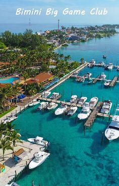 Bimini Big Game Club - Bahamas resort and marina. Location of Coldwell Banker Bimini Bahamas Resorts, Bahamas Honeymoon, Bahamas Vacation, Vacation Travel, Travel Images, Travel Photos, Caribbean Vacations, World Images, Best Hotels
