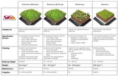 10 Startling Ideas: Green Roofing Modern roofing tiles home.Green Roofing Modern roofing deck how to build a. Roofing Options, Roofing Systems, Roofing Materials, Green Roof Benefits, Vertikal Garden, Living Roofs, Living Walls, Residential Roofing, Modern Roofing