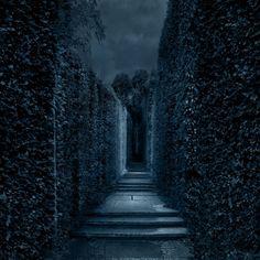 Premade BG Labyrinth 2 By E DinaPhotoArt Background