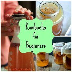 Searching high and low for kombucha recipes? We've got beginner's tutorials plus crazy recipes like kombucha jello and sorbet! Kombucha Tee, Kombucha Recipe, Kombucha Flavors, Probiotic Foods, Fermented Foods, Raw Food Recipes, Healthy Recipes, Kefir Recipes, Nutribullet Recipes