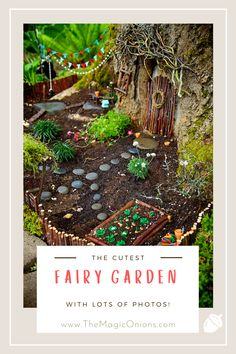 Have you made a magical Fairy Garden yet? Making a new fairy garden is a Spring tradition in our home and this is a particularly beautiful fairy garden that is built around a mossy tree trunk. Click through to see lots of gorgeous photos and ideas. And visit my other many fairy garden posts to see hundreds of DIY fairy garden tutorials and projects. Believe me, making a fairy garden is as magical for adults as it is for children. xo Donni #FairyGarden #Gardening Garden Trees, Garden Bridge, Cats Academy, Outdoor Trees, Garden Posts, Natural Homes, Cute Fairy, Beautiful Fairies, Fairy Doors