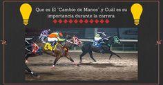 Que es El Cambio de Manos y Cuál es su importancia durante la carrera. Blog AQHA Cambio de Manos en Caballos cambio de manos en caballos cuarto de milla Cambio de Manos en Caballos Pura Sangre Carrera de Caballos StallionMexSearch