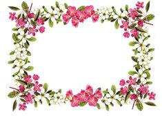 vintage flower frame / border png; free download; digital scrapbooking